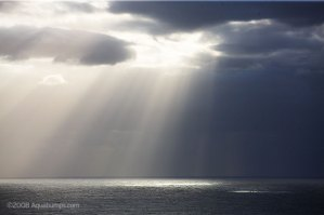 Rays of Light, Bondi, © aquabumps.com, 2008