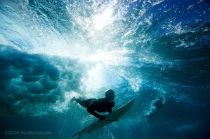 Explosion duckdive, Bondi  (courtesy www.aquabumps.com)